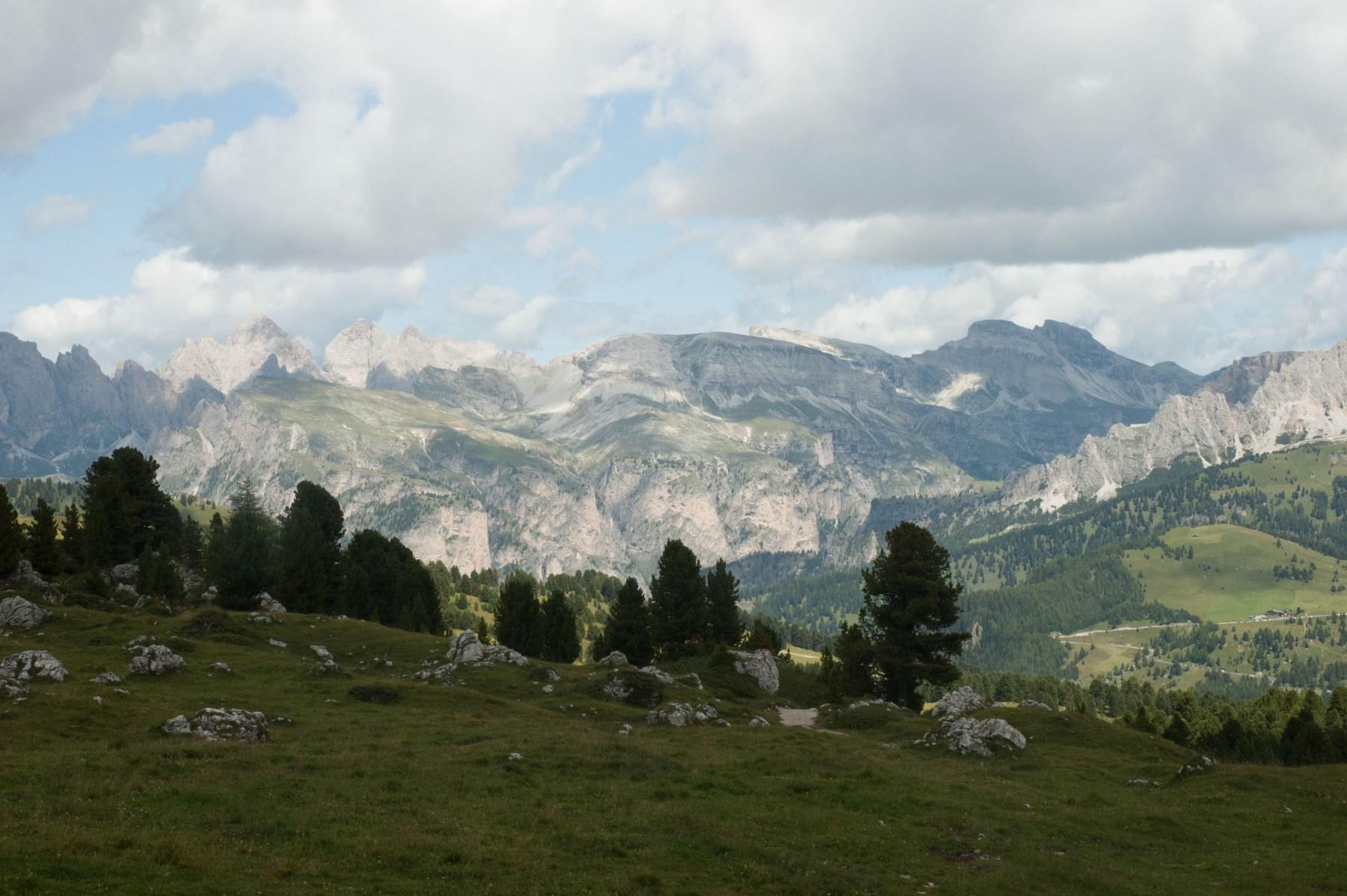 2009-08-15_1165