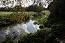 Haslingfield Countryside